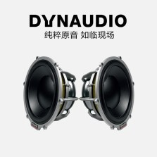 【免费安装】丹拿DYNAUDIO ESOTAR² 650 中低音喇叭一对 原装丹麦进口音响改装 两只中低音音扬声器200瓦